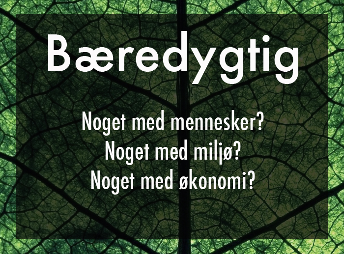 14.12.16 hvad er bæredygtighed