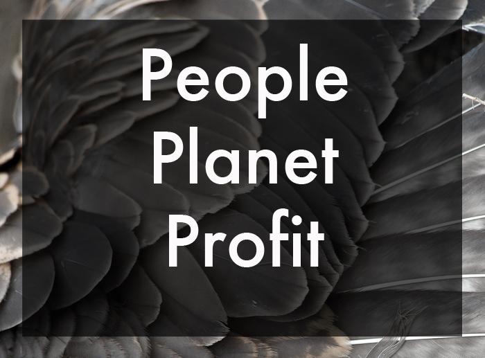 14.12.16 hvad er bæredygtighed2