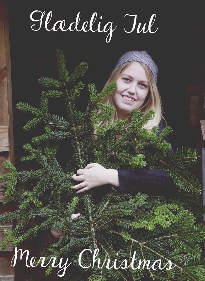 14.12.24 glæderlig jul