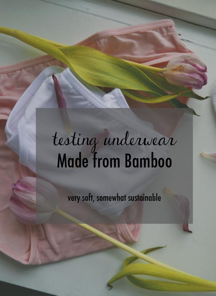 Tidssvarende Test af undertøj og noget mere om bambus ~ BedreMode.nu QI-85