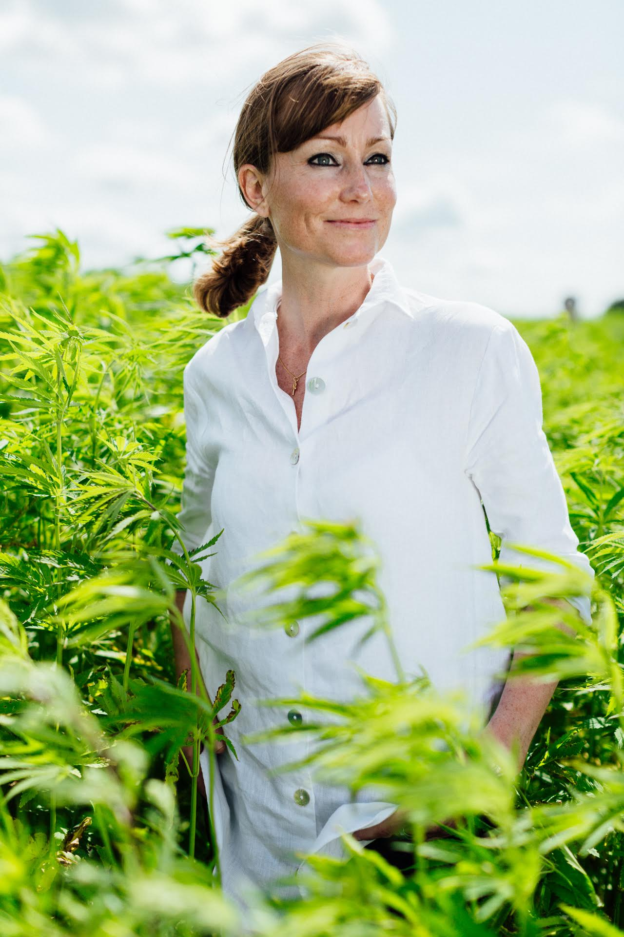 Hemp is the new sustainable fiber