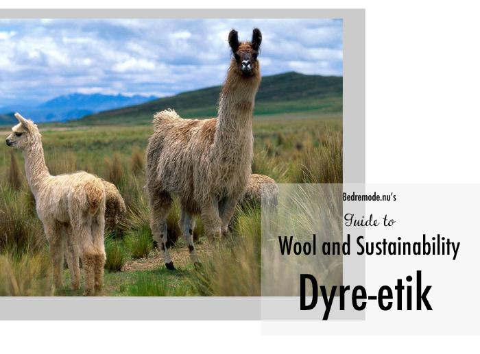 wool guide 2