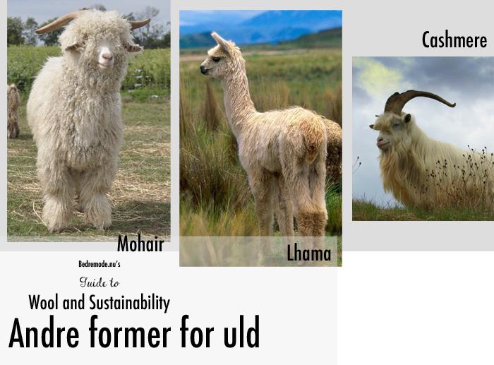 wool guide 4