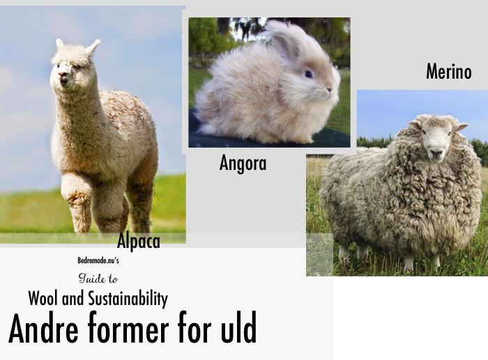 wool guide 5