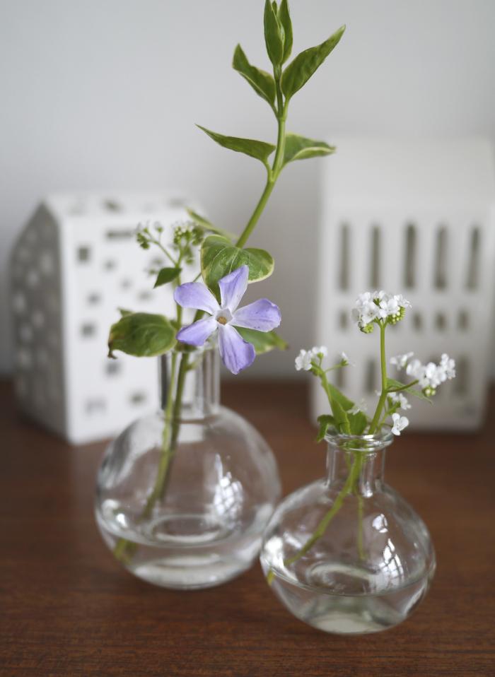 update blomster og bæredygtighed